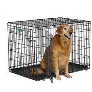 Cages pour chien