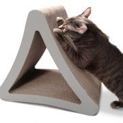 griffoir-design-triangulaire-chat