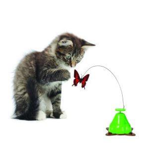 Autres jeux pour chat