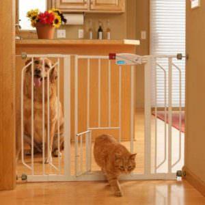 Portes pour chien