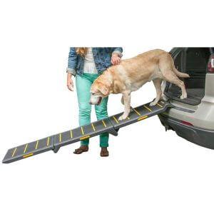 rampe-telescopique-chien