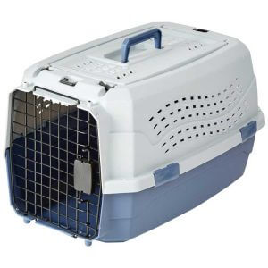 cage-plastique-amazonbasics-chien