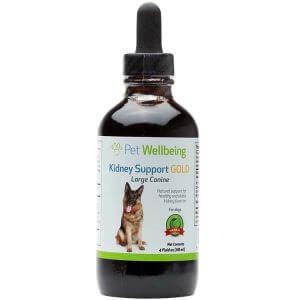 supplements-alimentaires-reins-chien