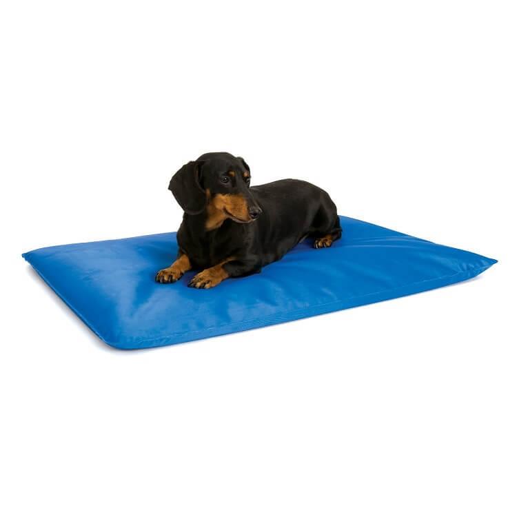 tapis-refroidissant-chien