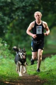 Canicross avec chien