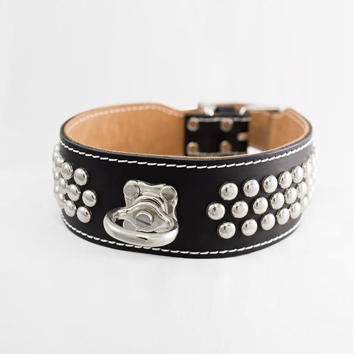 Collier pour chien cuir noir
