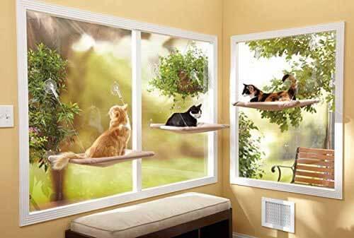 Lit-fenetre-chat