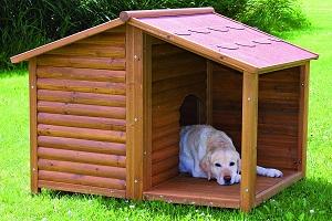 Maison de luxe grand chien