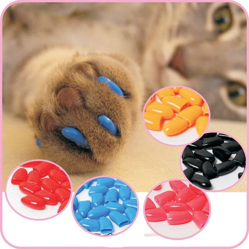 Protege griffe pour chat couleurs