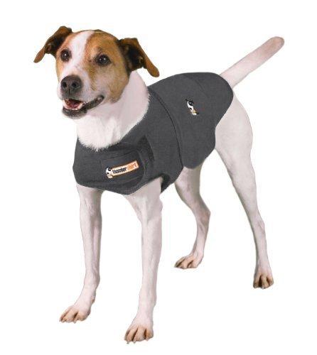 Thundershirt chien anxieux