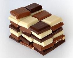 Chocolat chien