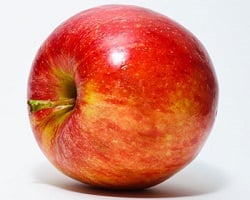Pomme pour chien
