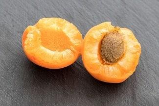 abricot-pour-chien