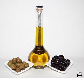 olive-huile-pour-chien