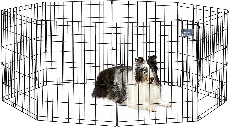 Enclos chien Midwest