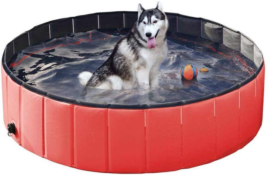 Meilleure piscine pliable chien