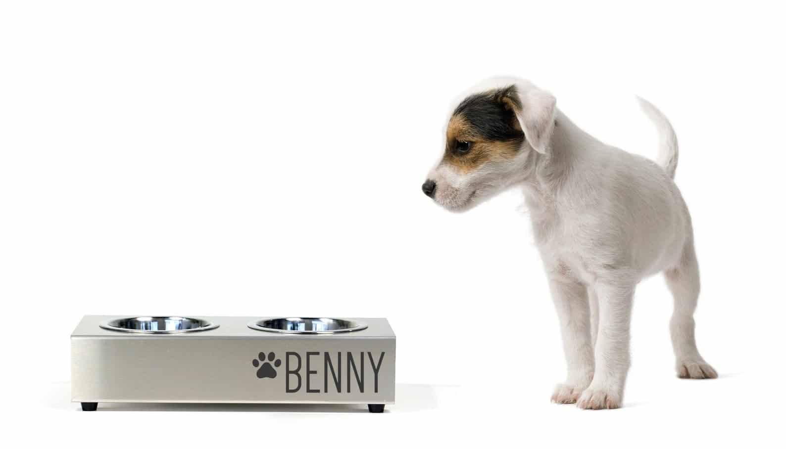 Benny bol